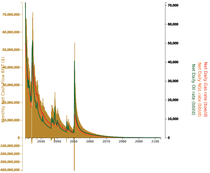 Figure 7. Net Cash Flow Summary and Net Production
