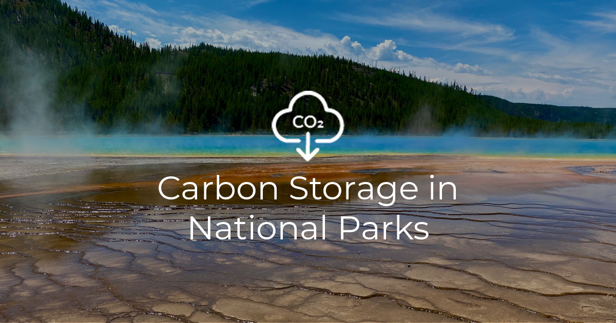 Carbon Storage in National Parks