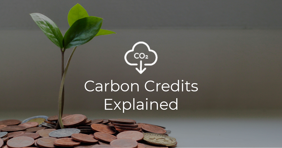 Carbon Credits Explained